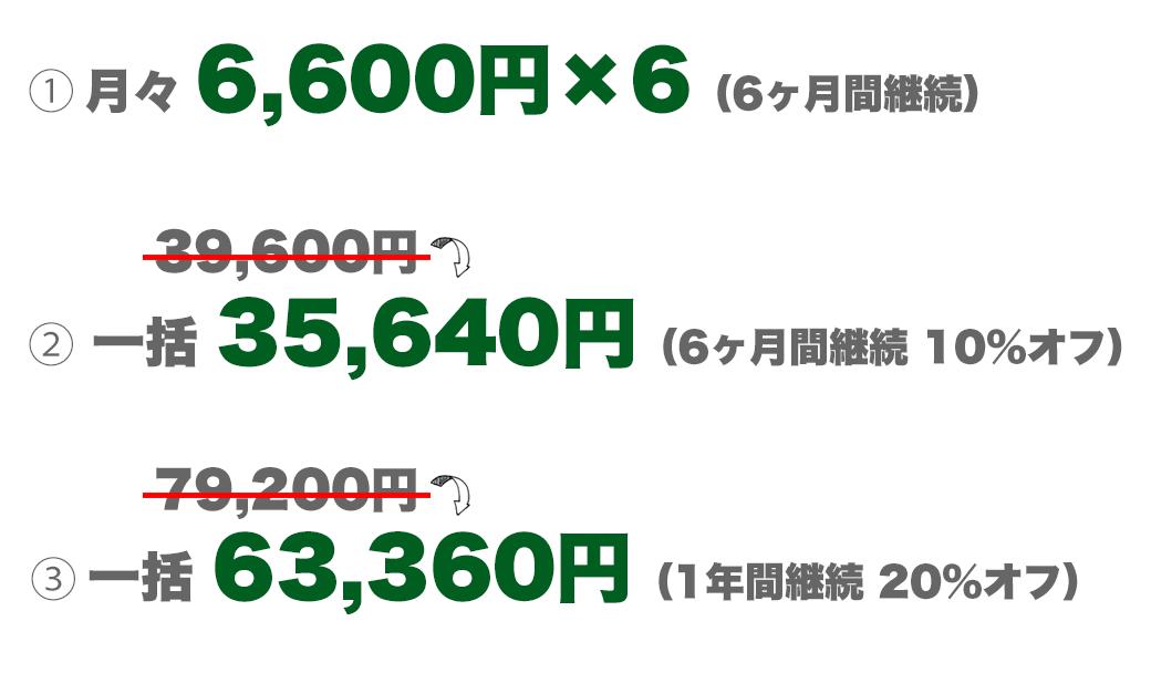月々6600円